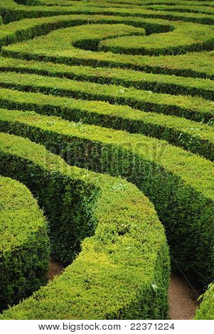 Labirinto da espiral