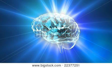 Blue Brain-Reflexlicht