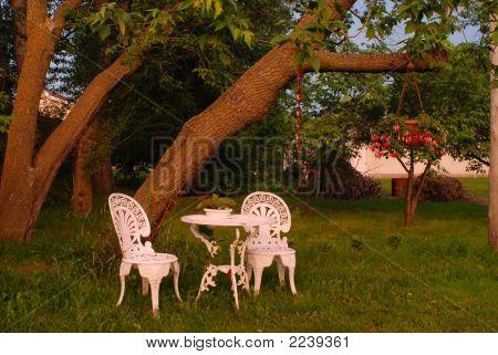 Idyllic Backyard