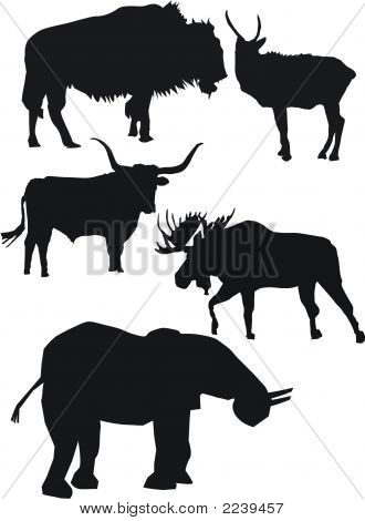 Strong Animals Silhouettes