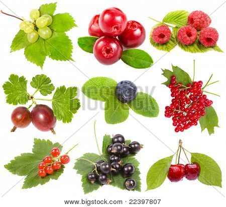 collection of ripe berries, isolated on a white background