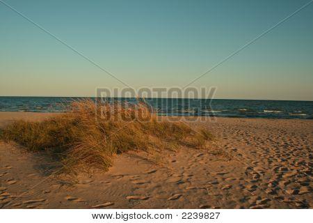 Grassy Dune