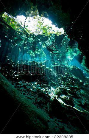 Deep Inside The Cenote