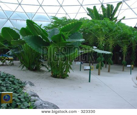Invernadero de hidroponía