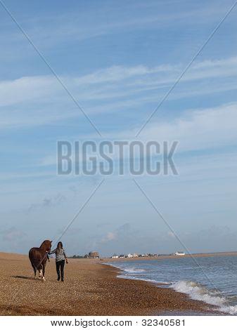 Girl And Horse On Beach