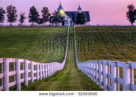 Horse farm at sunset