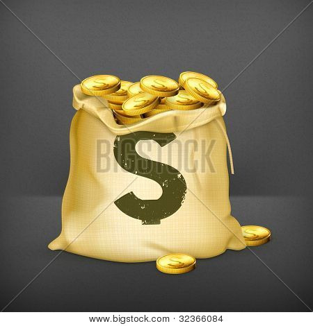 Bag of gold, vector