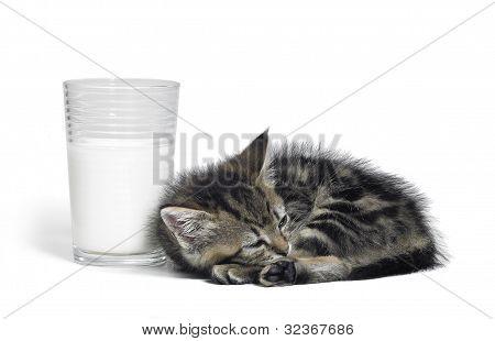 Kitten Besides A Glass Of Milk