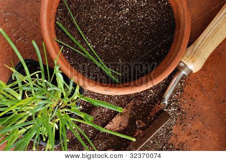 Top view of flower pot with spade and young chive plant on terra cotta tile.  Macro with shallow dof.  Focus on dirt and chives in pot.
