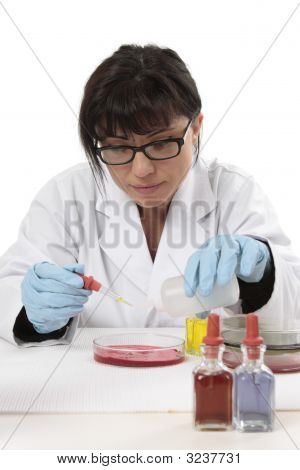 Scientist Chemist At Work