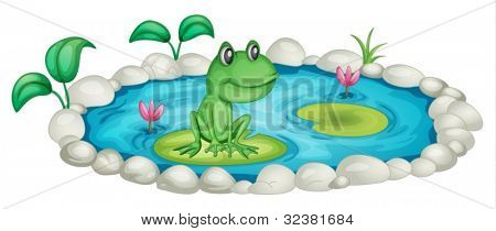 Frog in a pond illustration