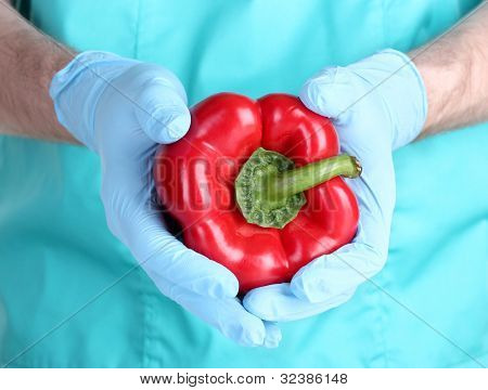 A scientist holds a genetically modified vegetable