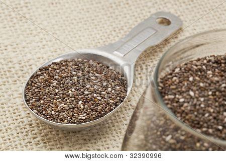 semillas de Chia en tarro de cristal y medir la cucharada de aluminio contra fondo de arpillera, centrarse en la