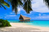 stock photo of kuramathi  - Diving club on a tropical island  - JPG