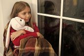 Merry Christmas And Happy New Year. Small Child With Rabbit Toy At Window. Small Girl Hold Toy Frien poster