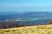 stock photo of cade  - Cades Cove from Gregory Bald in the Smoky Mountains - JPG