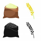 Vector Illustration Of Crop And Ecological Icon. Set Of Crop And Cooking Stock Symbol For Web. poster