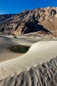 Sand dunes in Nubra valley in Himalayas. Hunder, Nubra valley, Ladakh poster
