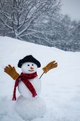 Snowman On A Background Snow-covered Fir Branches. Snowman In Snow Forest. Happy Funny Snowman In Th poster