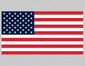 picture of usa flag  - American Flag - JPG