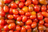 Red Tomatoes Background. Top View. Fresh Organic Tomatoes As Background, Closeup. Group Of Fresh Tom poster