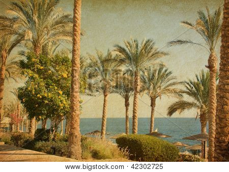 Retro image of  beach    with date Palms amid the blue sea and  sky.  Paper texture