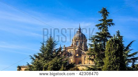 Salamanca Cathedral and Trees