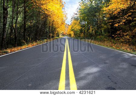 Rural Road Mid-Line In Fall Horizontal Orientation