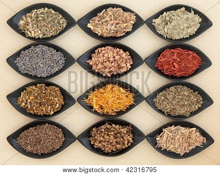 Medicinal herb selection also used in magical potions over cream textured background.
