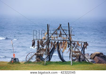 Trestles for hanging up fish to dry