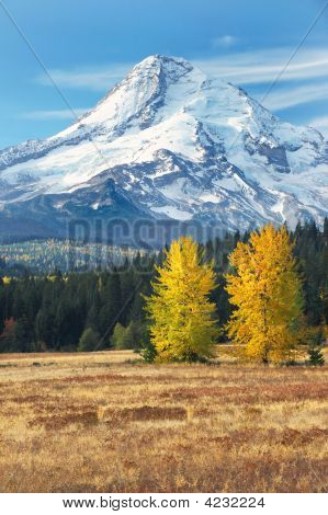 Mt Hood From The East Side In Fall