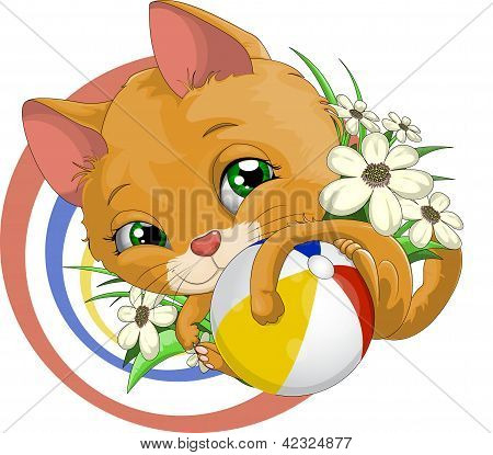 Small kitten and multi-colored ball