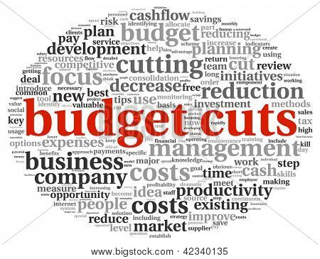 Budget preparing in word tag cloud on white background