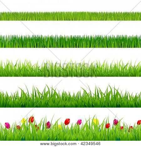 Big Green Grass And Flowers Set With Gradient Mesh, Isolated On Red Background, Vector Illustration