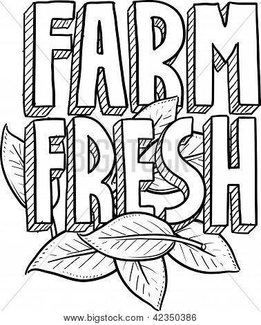 Farm fresh food sketch