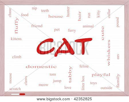 Cat Word Cloud Concept On A Dry Erase Board