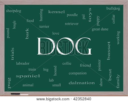 Dog Word Cloud Concept On A Blackboard