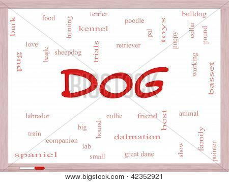 Dog Word Cloud Concept On A Dry Erase Board
