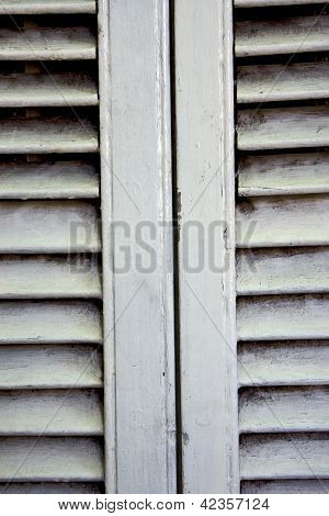 White Wood Venetian Blind