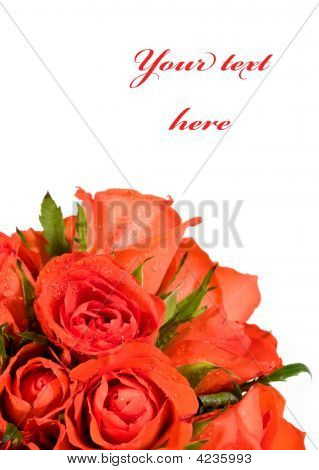 Wet Red Roses Vertical Frame