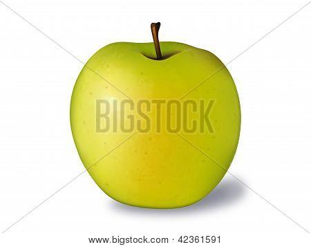 golden apple vector illustration