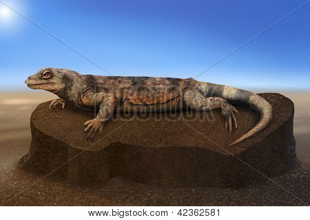 Desert Lizard warming on a rock - digital art