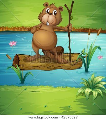 Beispiel für ein Biber, einen Wald im Fluss halten