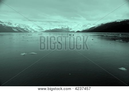 Glacier And Offshoot, Alaska