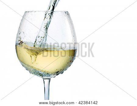 White wine splash isolated on white background