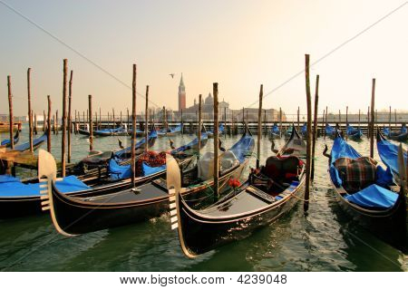 Grand Canal With Gondolas