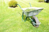 stock photo of grass-cutter  - Gardening season  - JPG