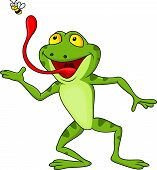 picture of snatch  - Vector illustration of frog cartoon with fly isolated on white - JPG