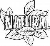 pic of naturel  - Doodle style natural food or product illustration in vector format - JPG