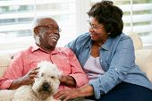 Happy Senior Couple Sitting On Sofa With Dog
